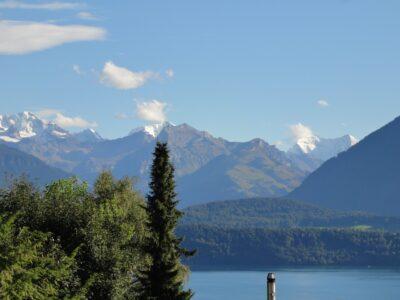 Aussicht Oberhofen - Blick Richtung Jungfrau