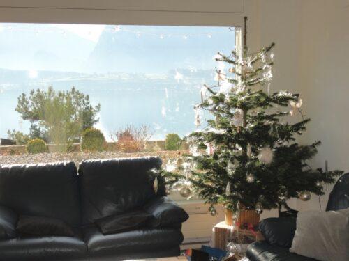 Weihnacht 2015, Oberhofen am Thunersee