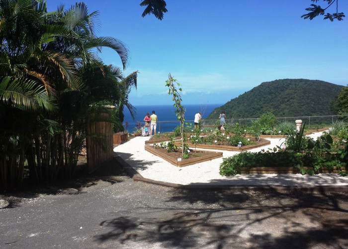 Ferien Goudeloupe 2014 - botanischer Garten