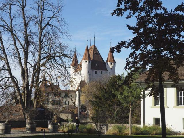 Schloss Thun November 2018